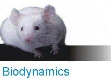logoBiodynamics